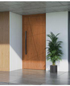 LIM AG07 - aluminium front door for home